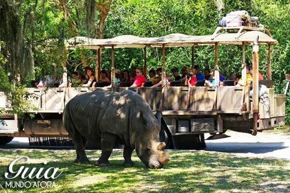 Roteiro Animal Kingdom, na Disney