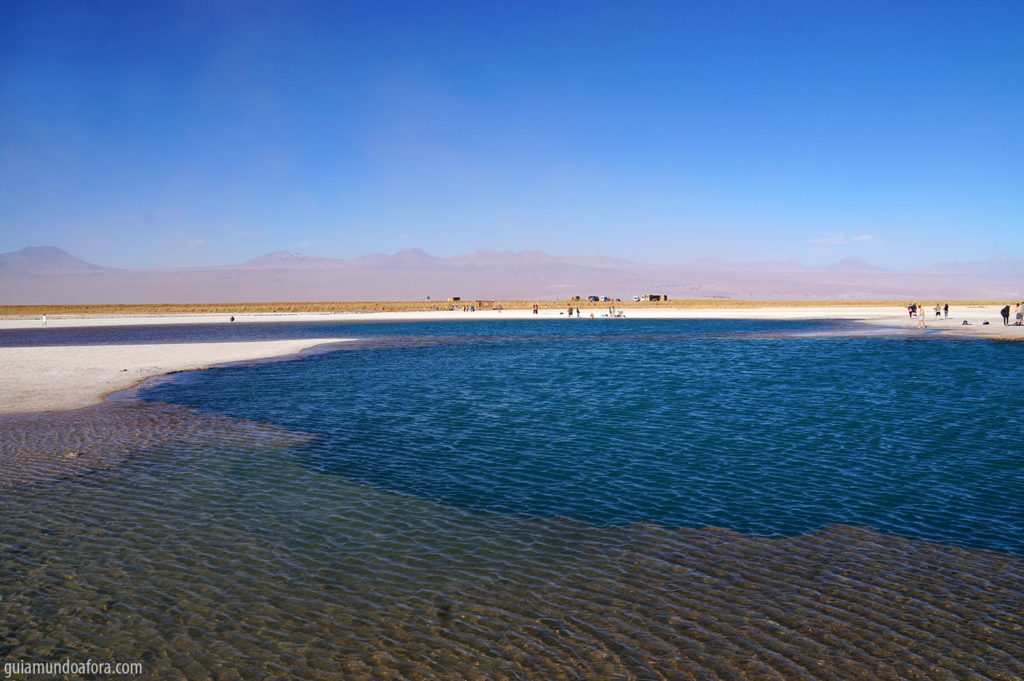 Laguna Cejar no deserto do Atacama