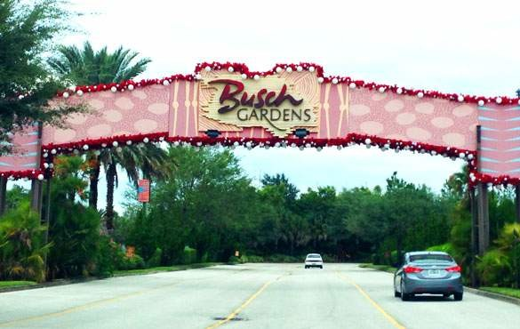 Tudo sobre o Busch Gardens em Tampa