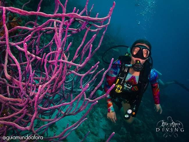 Mergulhar em Curaçao é indescritível!