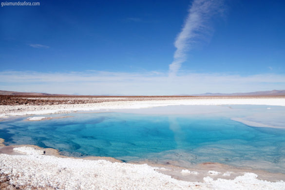 Lagunas escondidas no Atacama: azul do Caribe no meio do Deserto!