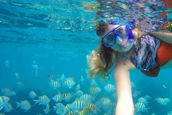 Snorkel e mergulho em Barbados: fotos que vão te encantar