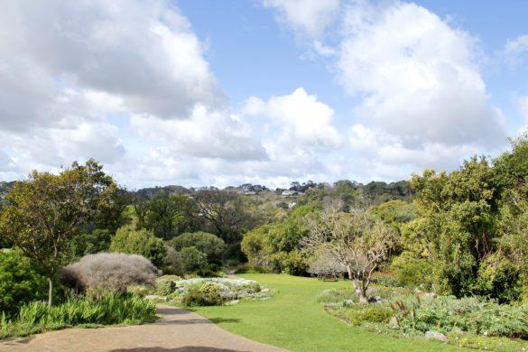 Jardim Botânico de Cape Town: kirstenbosch