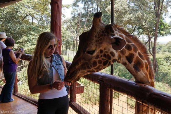 Centro de girafas em Nairóbi – preservação animal no Quênia
