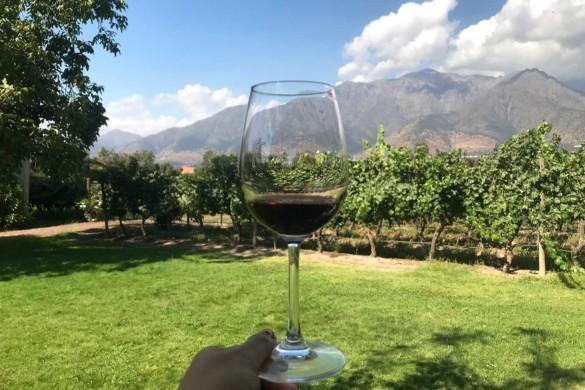 Top 3 vinícolas em Santiago para visitar por conta própria