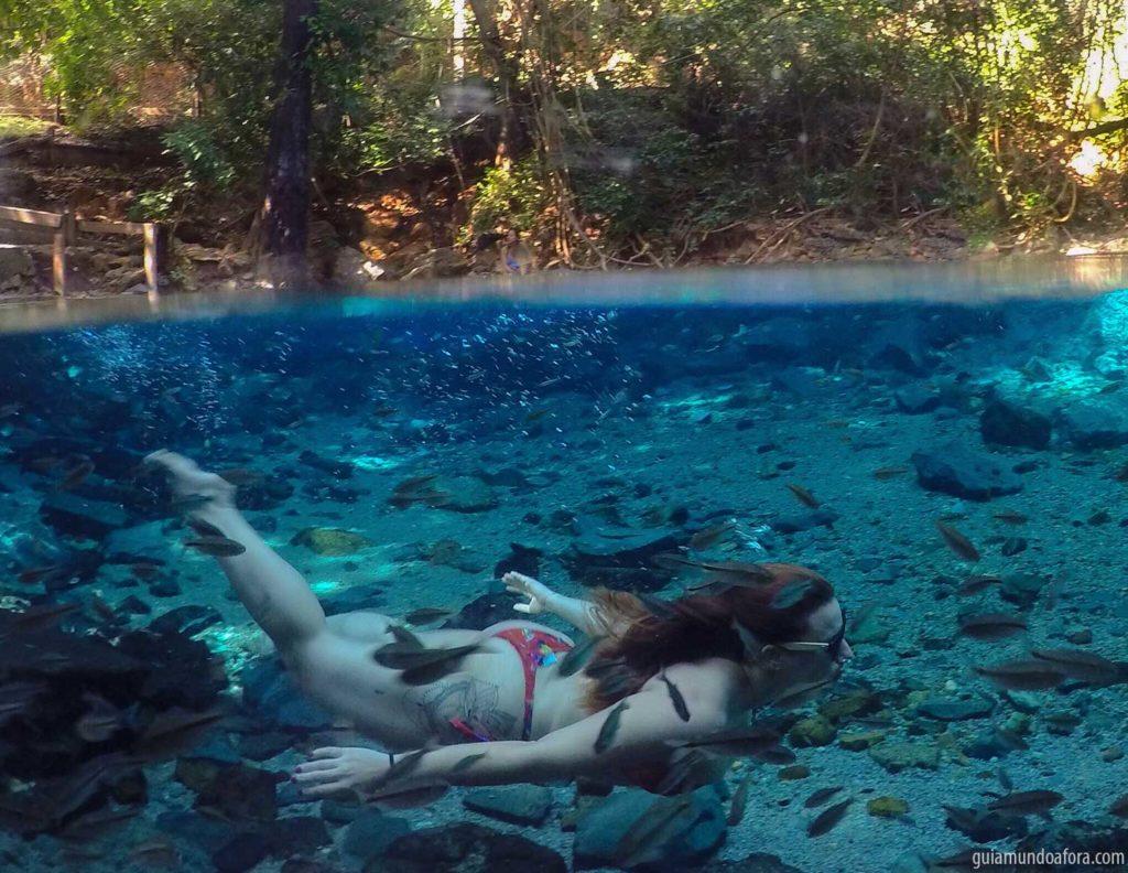 serras gerais rio azuis