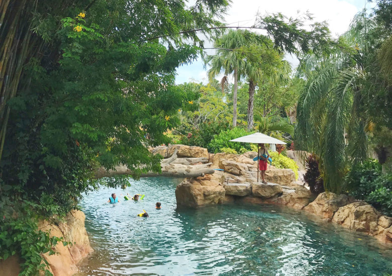 Piscina do Discovery Cove, SeaWorld