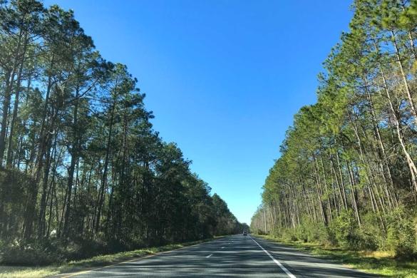 Arredores de Orlando: onde ir e o que fazer?