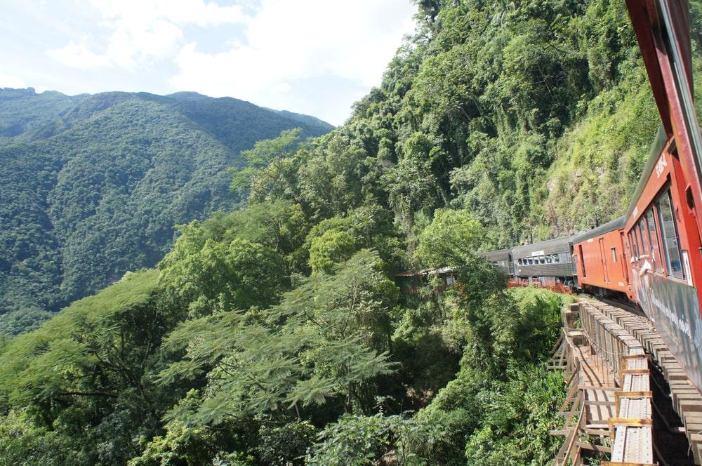 Passeio de trem no Paraná, natureza no Brasil